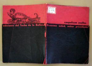De las contadas ediciones existentes del Techo de la Ballena