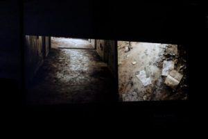 Estas fotos corresponden al cierre de la serie expuesta en la galería. Foto: Gerardo Rojas