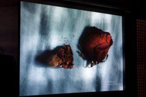 Una de la fotografía descartada en el proceso de selección de Huellas. Foto: Gerardo Rojas